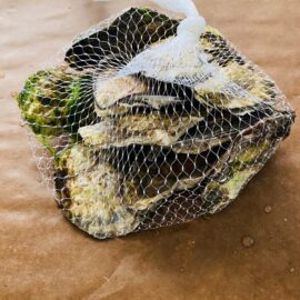 oysters+in+bag